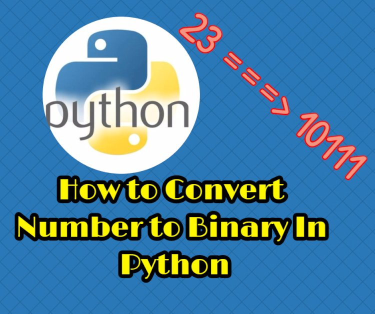 How to Convert Number to Binary In Python